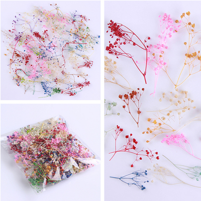 10g-Bag-Dried-Flower-Cornflower-Pretty-Preserved-Flower-3D-DIY-Manicure-Nail-Art-Decoration.jpg