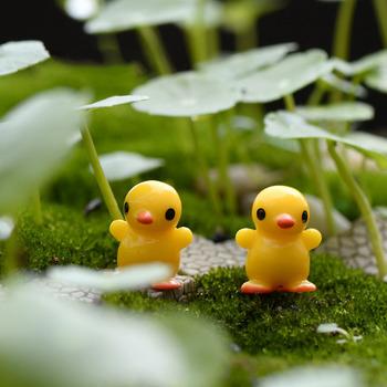 6pcs-Mini-Cute-Small-Yellow-Duck-Resin-Craft-Home-Decor-Artificial-Animal-Miniature-Moss-Landscape-Fairy.jpg